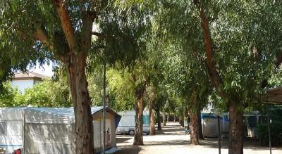 camping-gabbiano-13