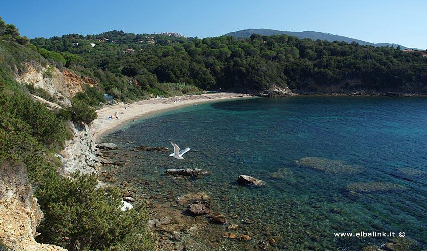 Spiaggia di Barabarca - Isola d'Elba