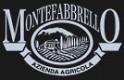 Logo Farm Holiday Monte Fabbrello