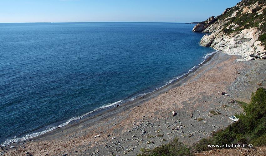 Spiaggia di Colle Palombaia - Isola d'Elba