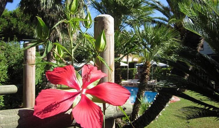 Residence dei Fiori, Isola d'Elba